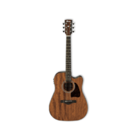 IBANEZ AW54CE Acoustic Electric Guitar